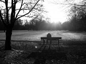 bench copy